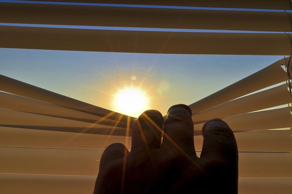 window blinds trends